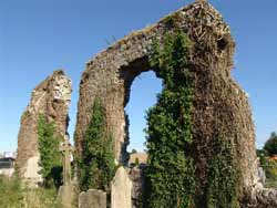 Clane Friary Ruins