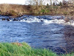 The Old Road / Weir on the Liffey at Clane
